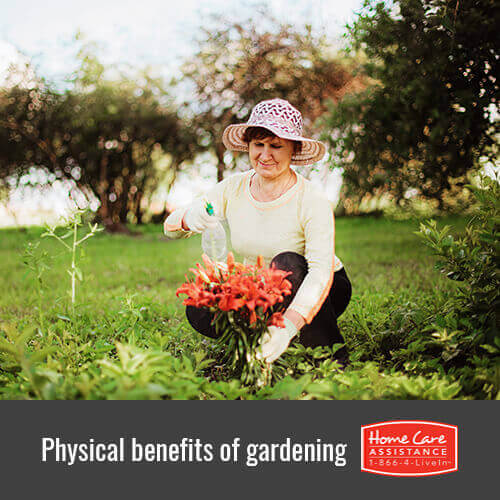 How Seniors Can Physically Benefit from Gardening in Roseville, CA