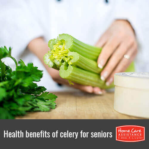 Why Roseville, CA Seniors Should Eat More Celery