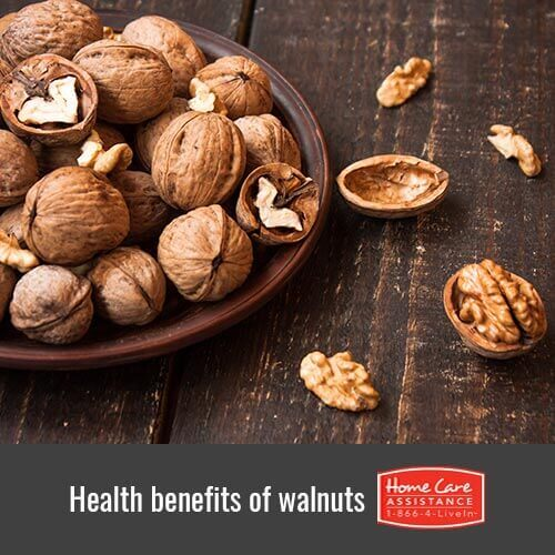 Why Walnuts Are Beneficial for Senior Health in Roseville, CA