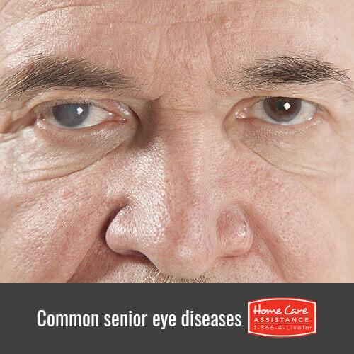 Typical Eye Diseases Among Seniors in Roseville, CA