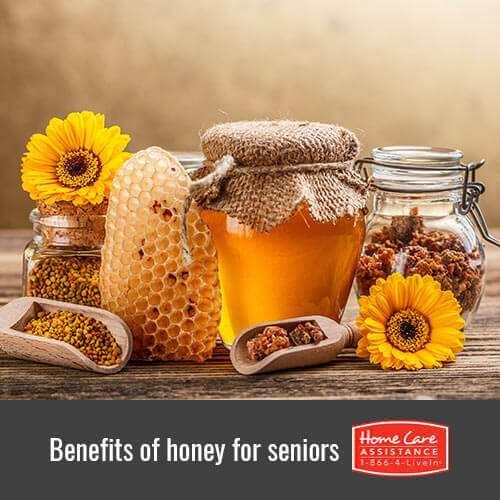 Why Honey Is Healthy for Seniors in Roseville, CA