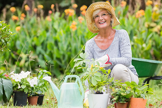 5 Healthy Hobbies for the Elderly in Roseville, CA