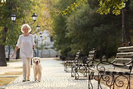 Habits for Seniors Who Want to Age Well in Roseville, CA