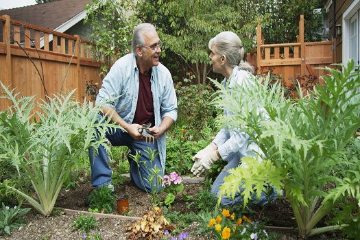 Healthy Activities Aging Adults Can Enjoy at Home in Roseville, CA